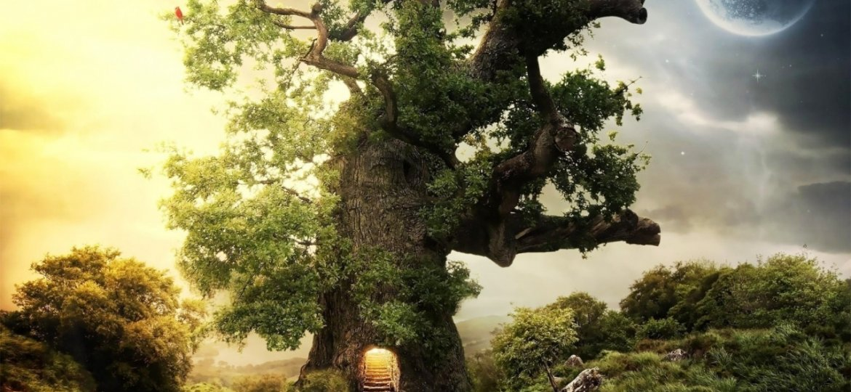 day_night_tree-1280x800